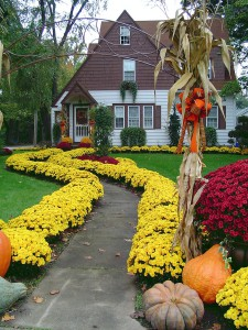 this is the prettiest house on the block all decked out in fall's finest colors! ** Note: Slight blurriness, best at smaller sizes